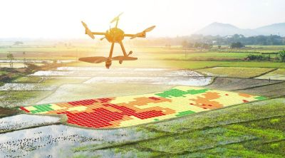 End-to-End Precision Farming Software Solutions