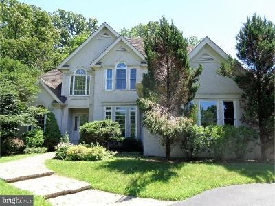 5 Bed 5 Bath Foreclosure Property in Garnet Valley, PA 19060 - Mattson Rd