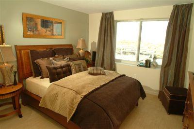 One Bedroom In Cambridge