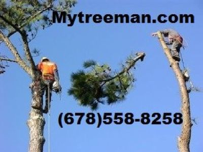 Estimate FREE~TREE CUT 678-558-8258 Removal Service's www.mytreeman.com
