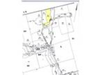 2 Lots Totaling 20+ Acres - Frontage on Temple Stream