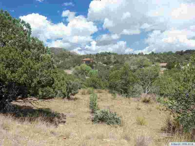 xx Schiff Trail Silver City, Indian Hills lot is wooded with