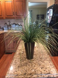 NICE GREENERY PLANT ! Measures 26x26 perfect way to complete and put the final touch on a grouping !