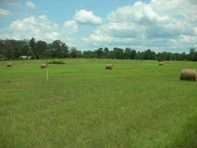 - $18750 2.5 acres for mobile home or site-built (Jefferson, TX)