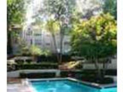 Beautiful Pool Great Gym Spacious Floorplans