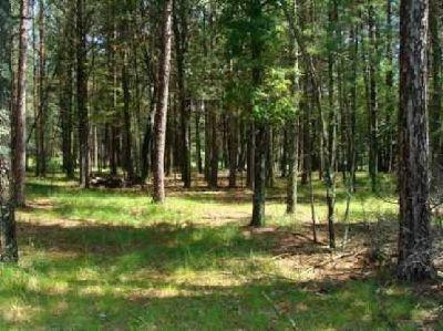$15,900 Lake Arbutus Area Cabin Site
