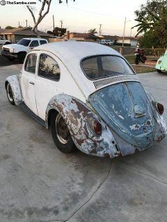1963 Bug