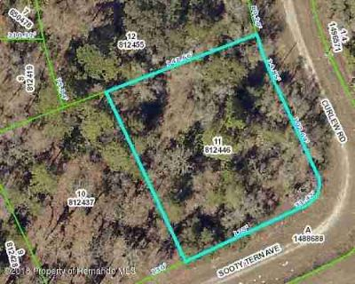 0000 Sooty Tern Avenue Brooksville, Build your dream home on