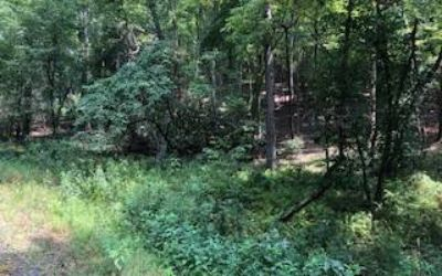 Lot 396 Walhalla CT Ellijay, Beautiful wooded lot located in