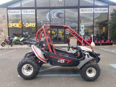 2018 Hammerhead Off-Road GTS Platinum Off Road Go-Karts Middletown, NJ