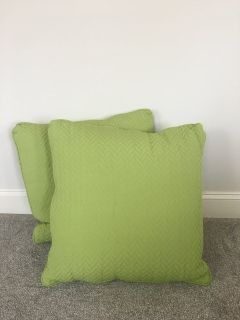 Set of 2 NEW Green Down-filled Sofa Pillows 19x19inch, zip covers