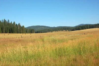 $650,000 240 Ac Ranch in Latah County, Idaho