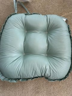 Set of 4 mint in color chair pads 2' thick new condition