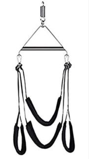 Adult Novelty Swing