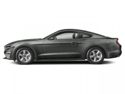 2019 Ford Mustang GT (Magnetic Metallic)