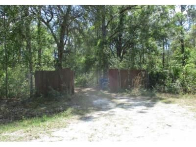 4 Bed 2 Bath Foreclosure Property in Hastings, FL 32145 - Irving St