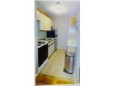 One BR One BA In Elmont NY 11003