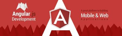 AngularJS Developer For Your Business Model