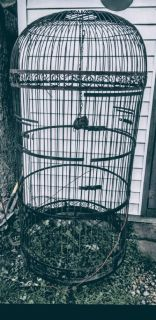 Extra Large Dome bird cage