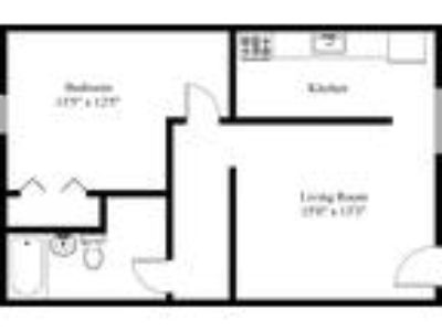 Liberty Village Apartments - 1 BD LARGE