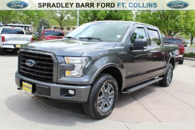 2016 Ford F-150 XLT (magnetic)