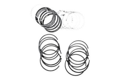 Purchase Omix-Ada 17430.51 - 1971 Jeep CJ Piston Ring Set motorcycle in Suwanee, Georgia, US, for US $80.04