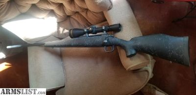 For Sale: 308 warbird
