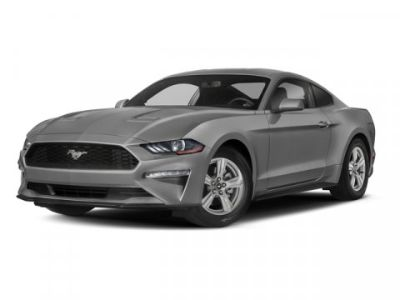 2018 Ford Mustang EcoBoost (Magnetic Metallic)