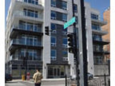 Chicago Two BR Two BA, 236 South Racine Avenue PH603