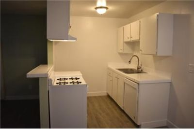 Spacious Apartments in Well Maintained, Pet Friendly Building