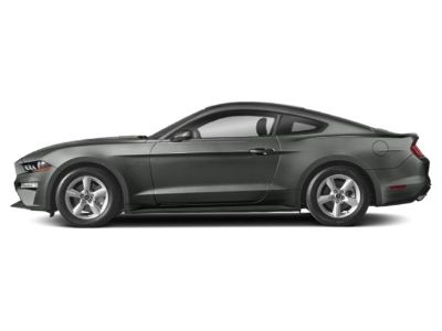 2019 Ford Mustang EcoBoost Fastback (Magnetic Metallic)