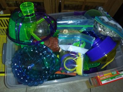 Hamster/Mouse/Gerbil activity center and habitat