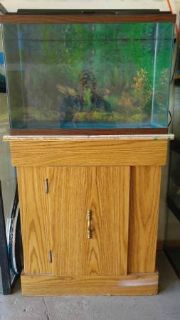 20 Gallon High Fish Tank & Stand & Accesories