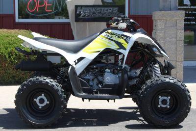 2018 Yamaha Raptor 90 ATV Sport Janesville, WI