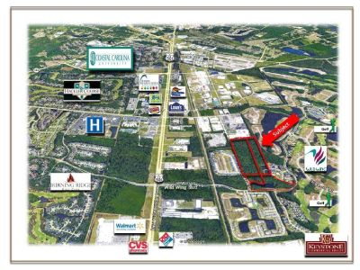 Lake Tract-37.27 Acres-Wild Wing Development Tract-Land for Sale-Conway, SC.