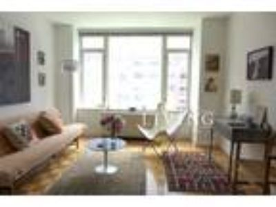 One BR One BA In New York NY 10282