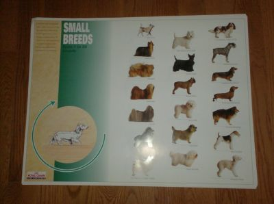 Dog Posters - Small, Medium, Large Breeds
