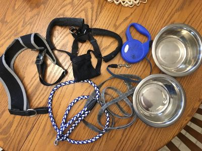 Dog accessories as shown.