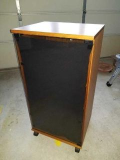 Tall Entertainment center Stereo cabinet