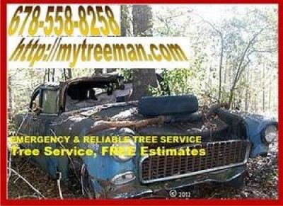 Tree Removal Tree Service Call Ken 4 an Estimate Visit MYTREEMAN.com Click BIG RED FREE QUOTE LINK