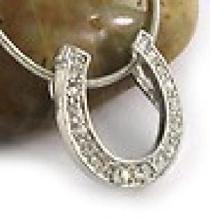 $22 Horse Shoe Jewerly