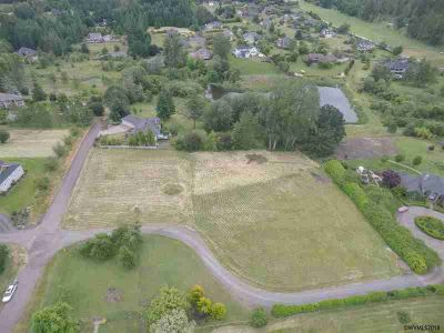 Dumbeck (Lot #1) Av NW Albany, Build your dream home on this