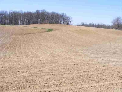 000 S 750 W Angola, this is a split from a 35 acre parcel.