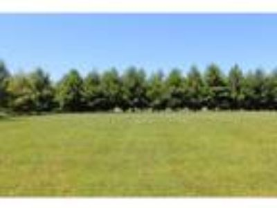 Charleston Real Estate Land for Sale. $24,317 - Emily Floyd of [url removed]
