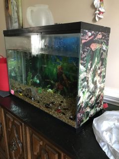 Fish tank with underground filter glass lid and light.