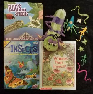 Bugs, Spiders, & Insects Lot
