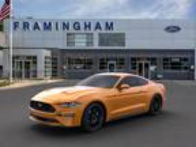2019 Ford Mustang, new