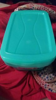 4 Storage containers with lids 81/2x13