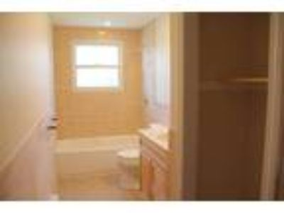 Watertown, Large and Sunny Three BR, 1.5 BA apartment on