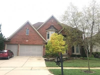 4 Bed 2.5 Bath Preforeclosure Property in Plainfield, IL 60585 - Rushmore Dr